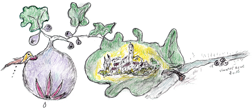 La figue de Solliès