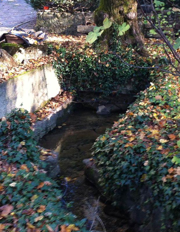 Source bleue du Gapeau