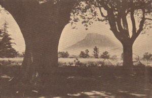 Beaulieu. Solliès-Pont