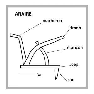 Araire