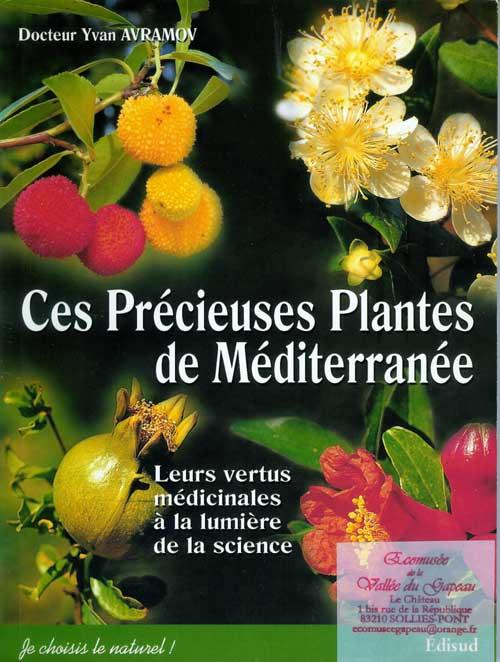 Ces Précieuse plantes de Méditerranée