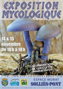 Exposition mycologique 2015